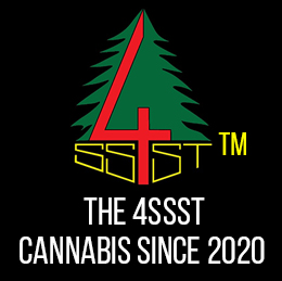 the4ssst